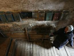 Медведев рекомендовал разрешить переселенцам докупать квадратные метры