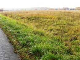 За 9 лет находящаяся в московской области земля повысилась в цене на 15 %