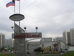 Дома в городе Москва будут создавать на месте парников