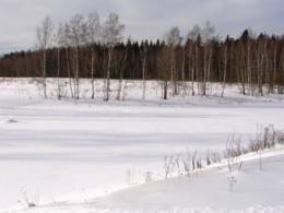 В Московской области установлен рекорд по реализации отделов без подряда