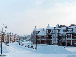 В Московской области основали населенный пункт лэйнхаусов