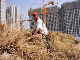 КНР заработал 4,8 триллиона долларов США на реализации территорий
