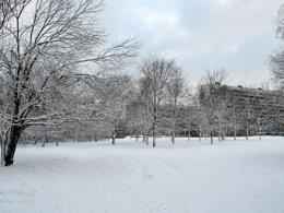 Около Битцевского парка возведут отель либо апартаменты